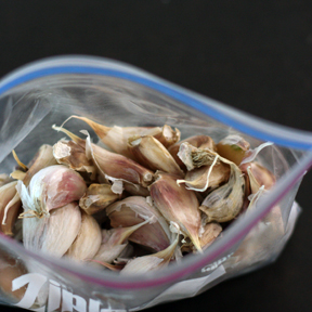 freezer garlic