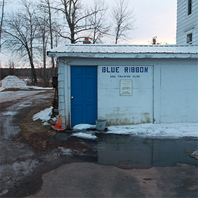 blue ribbon training club